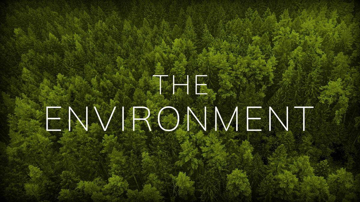 Collocations about environment