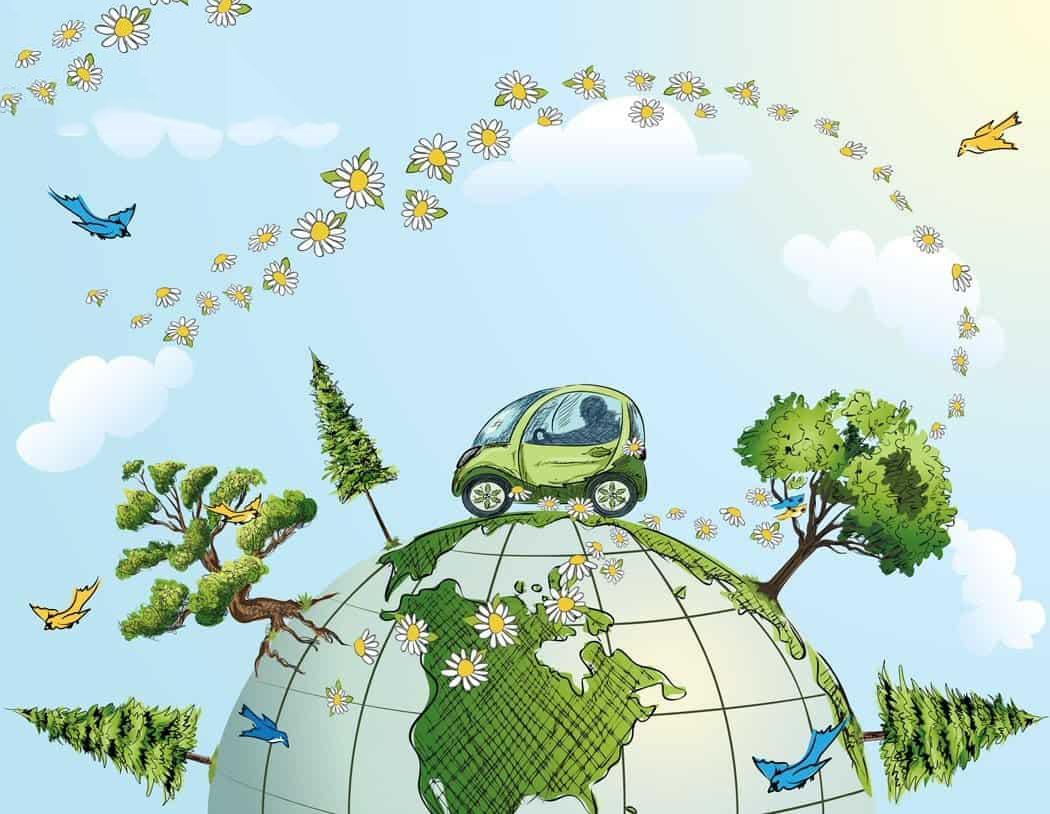 Môi trường là gì và phân tích yếu tố môi trường tự nhiên